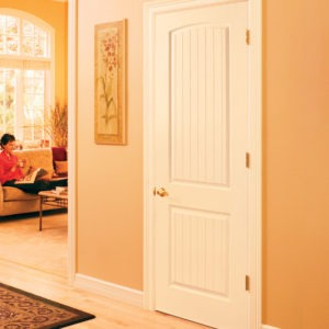 photo of 2 panel grooved door with arch top