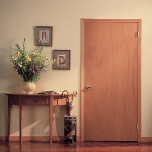 photo of flush style door