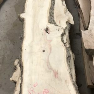 photo of 8/4 live edge Box Elder (kiln dried)