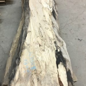 photo of 6' Spalted Maple Slabs