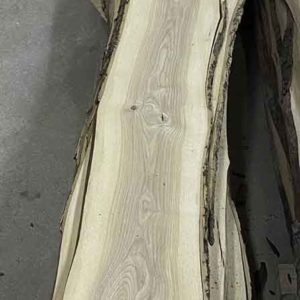 photo of sanded live edge Ash slab